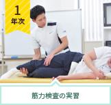 筋力検査の実習