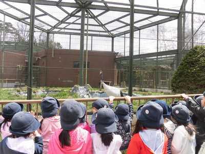 *年長さん動物園*