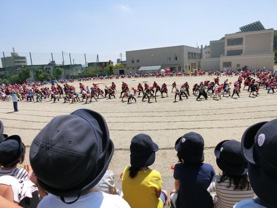 小学校運動会の練習見学!