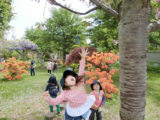 自由選択活動 ~中庭・木工コーナー~