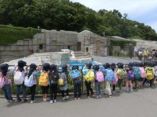 年長組 円山動物園遠足