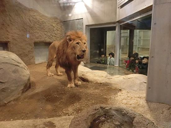 さくらんぼ2・4グループ 円山動物園